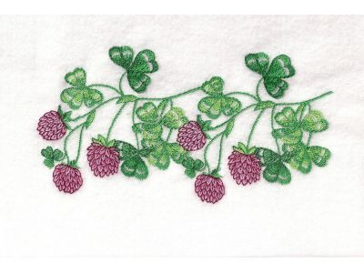 Embroidery Machine Designs - 5x7 Floral Endless Borders Set
