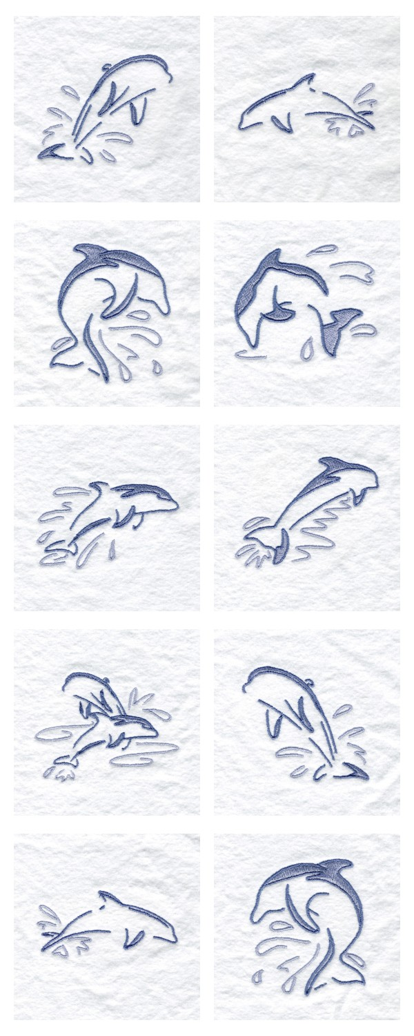 how to work with dolphins