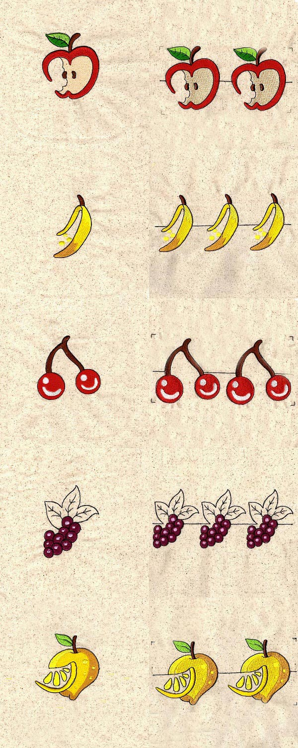 Fruit Borders Embroidery Machine Design Details